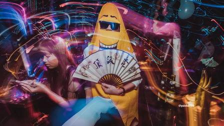 铁树酒吧海口 光棍节主题派对